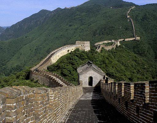Из чего построить стены дома?